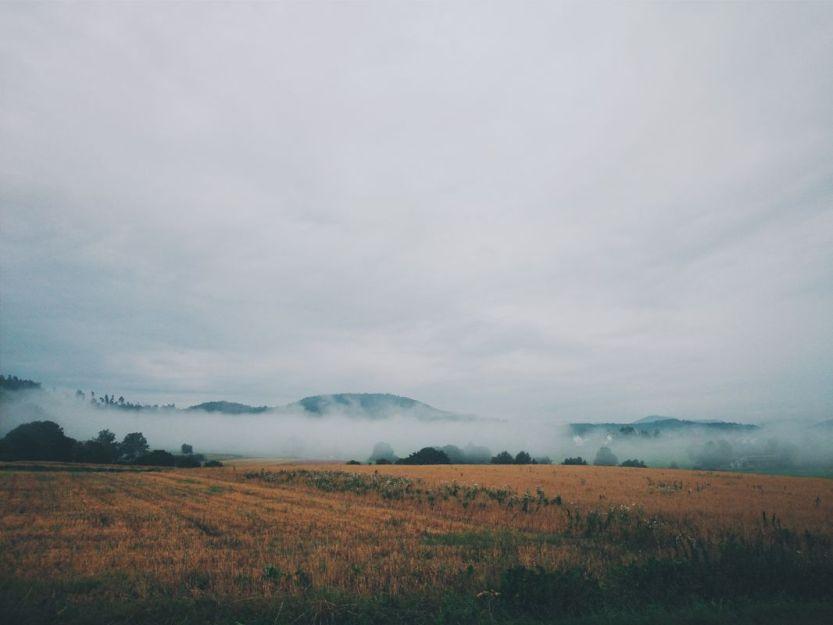 Foggy_E